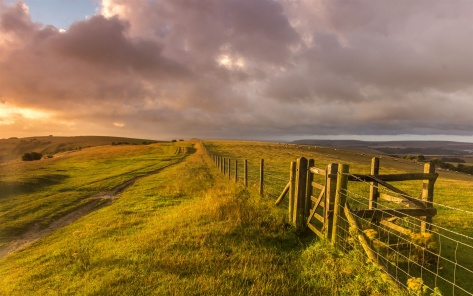 West-Sussex-England-landscape-grass-fence-farm-sheep_1440x900
